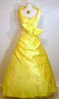 location_robe_princesse_citronelle_01