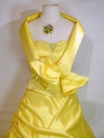 location_robe_princesse_citronelle_03